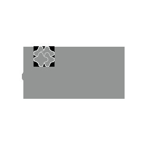 Client CAVI Brands